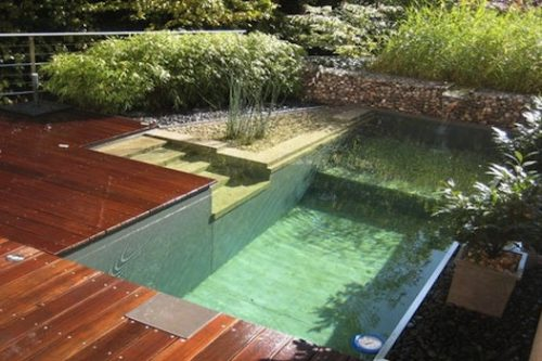 3 natural swimming pool